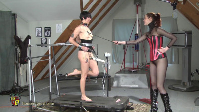 Made Workout Orgasm Training