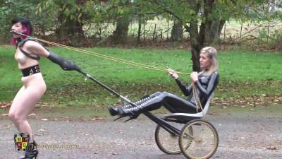 Pony Treadmill Trainer Upgrade
